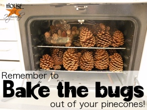 bake_pinecones_critters_hoh_2